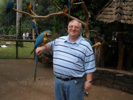 david with a blue and yellow macaw on his are